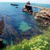 Photo Biarritz Rocher de la Vierge