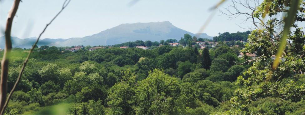 Depuis le jardin, vue sur les collines d'Arcangues et sur la montagne de la Rhune, connue pour son petit train à cremaillère