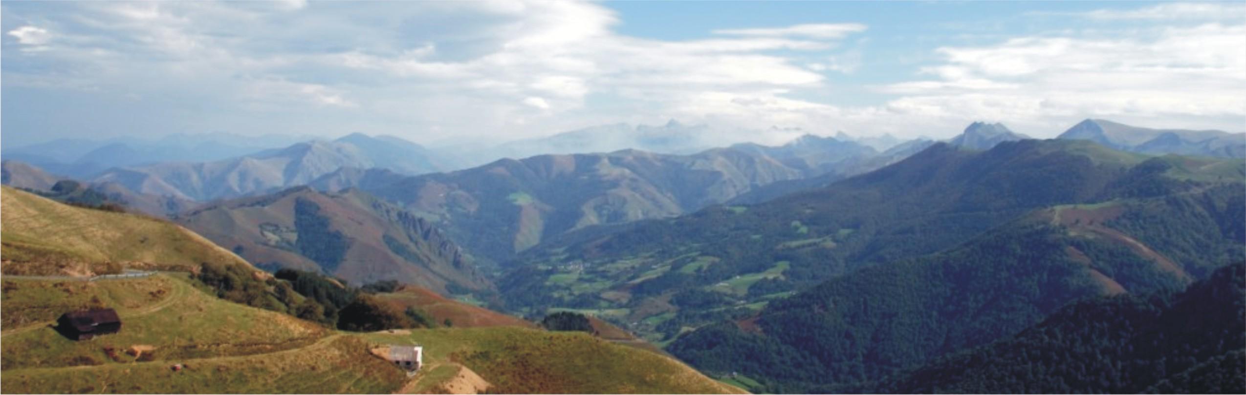 forêt iraty pays basque