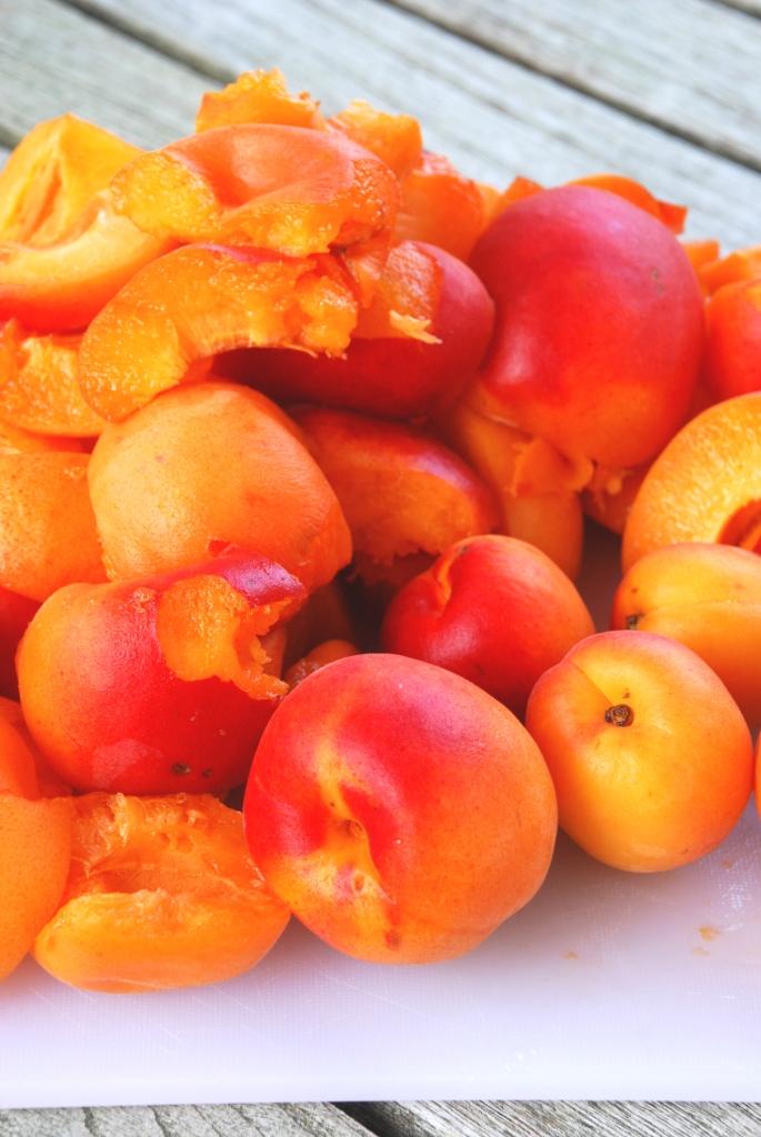 Recette confiture d 39 abricot la lavande atlantikoa - Confiture d abricots maison ...